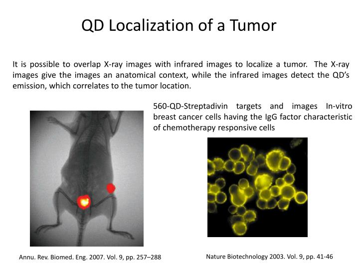 QD Localization of a Tumor