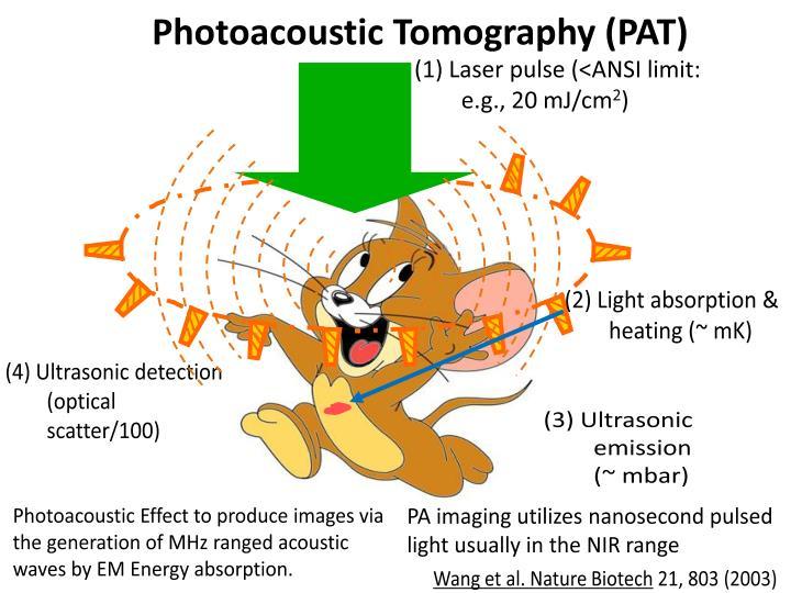 (1) Laser pulse (<ANSI limit: