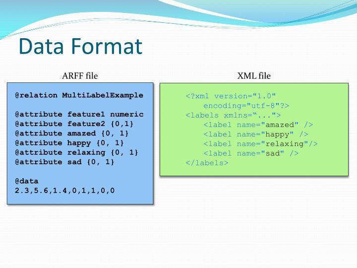Data Format