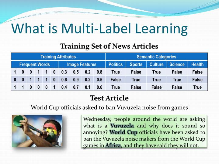 What is multi label learning