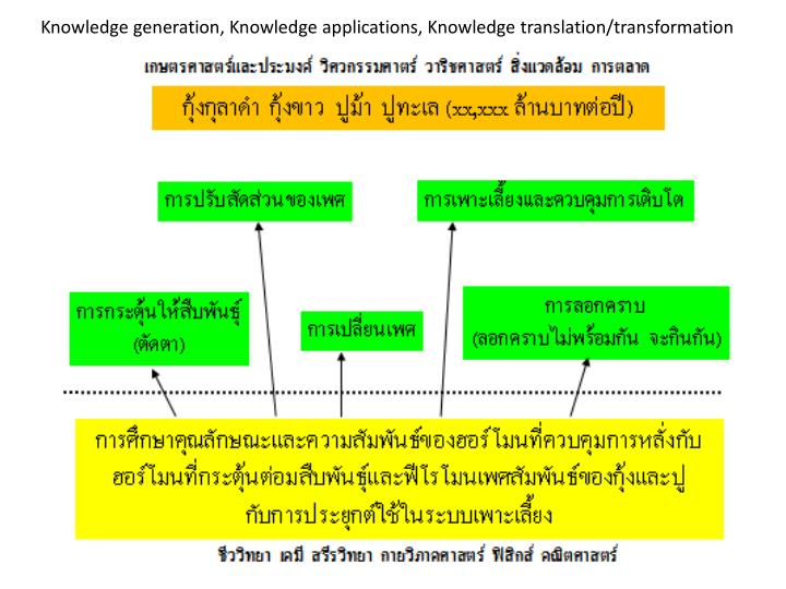Knowledge generation, Knowledge applications, Knowledge translation/transformation