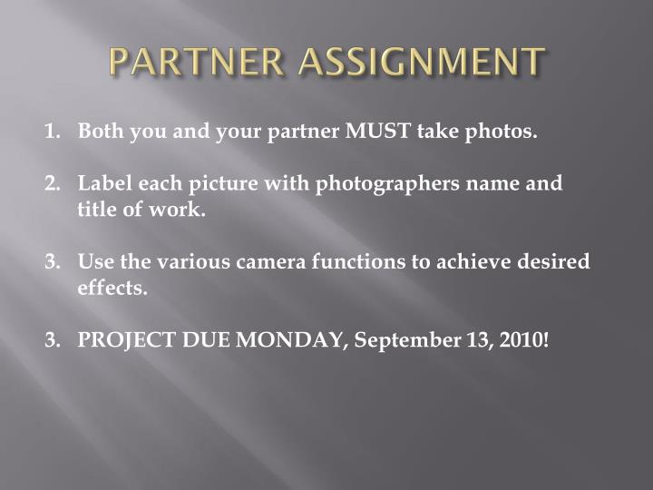 PARTNER ASSIGNMENT