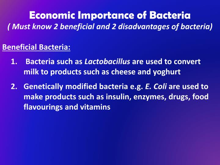 Economic Importance of Bacteria