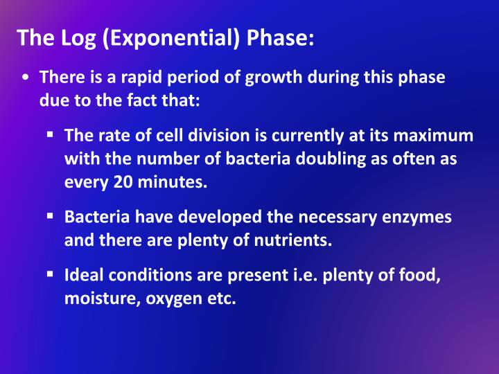 The Log (Exponential) Phase: