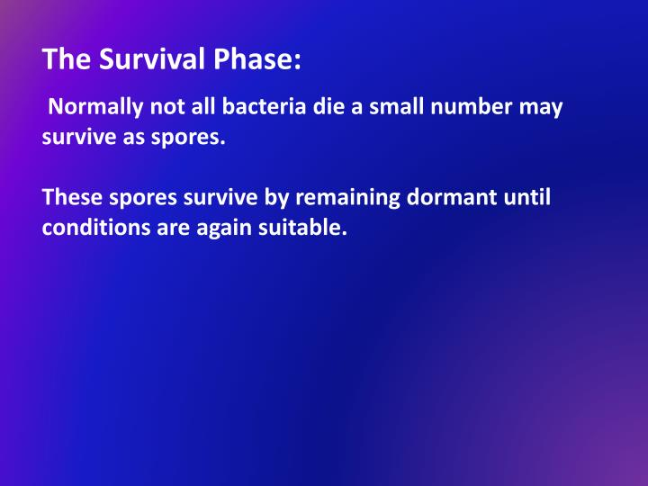 The Survival Phase: