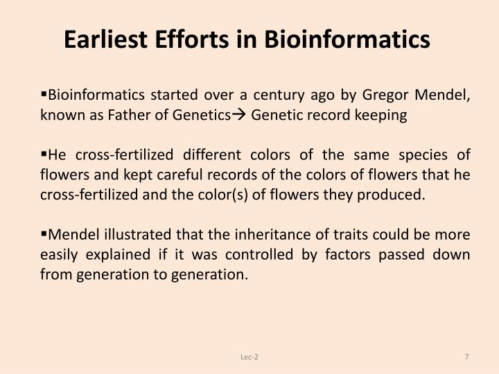 Earliest Efforts in Bioinformatics