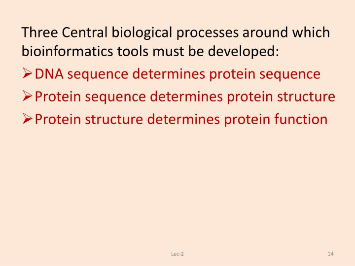 Three Central biological processes around which bioinformatics tools must be developed: