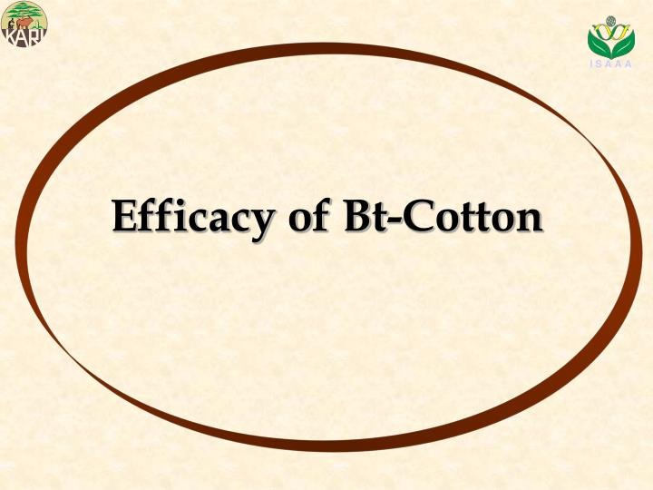 Efficacy of Bt-Cotton