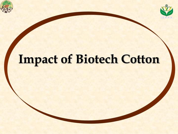 Impact of Biotech Cotton