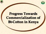 progress towards commercialization of bt cotton in kenya