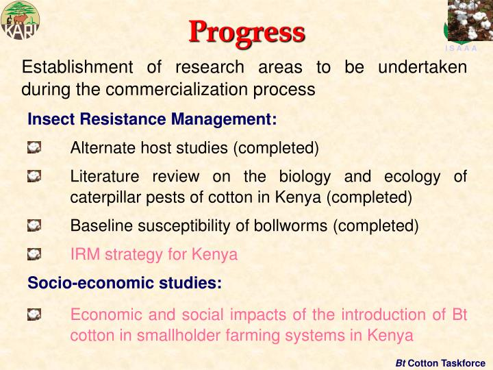 Establishment of research areas to be