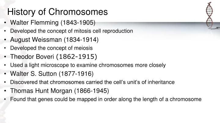 History of Chromosomes