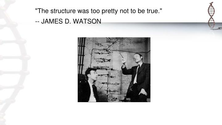 """The structure was too pretty not to be true."""