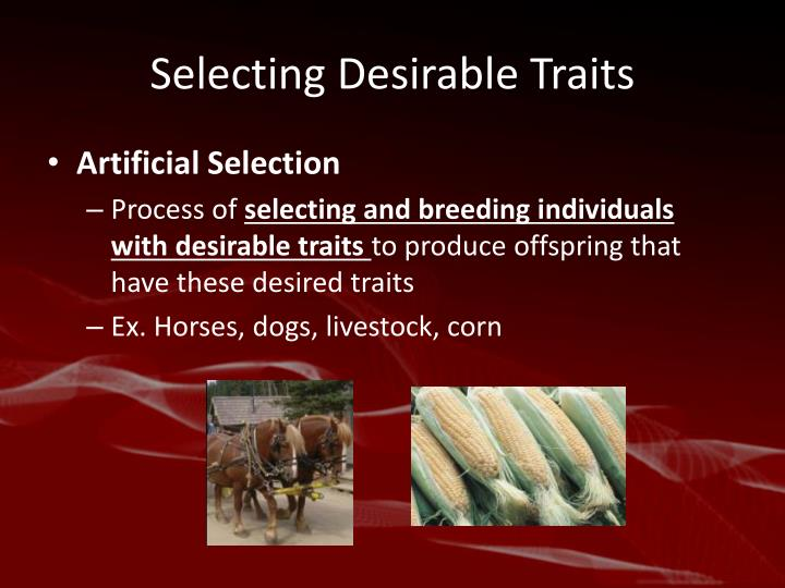 Selecting Desirable Traits
