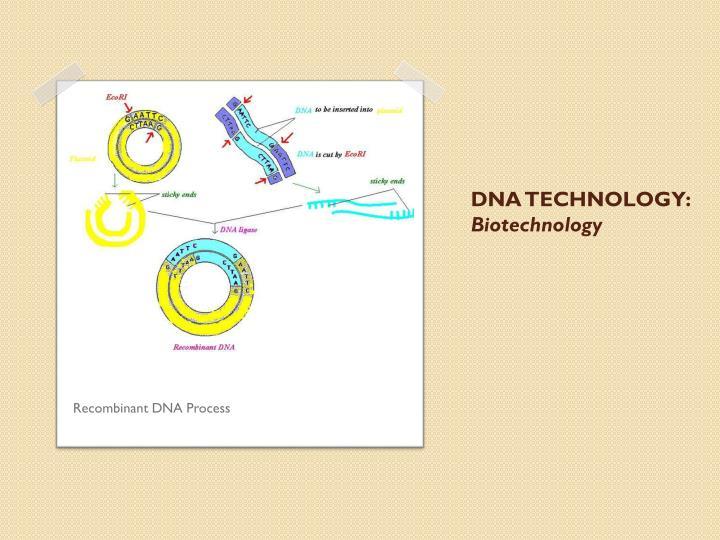 DNA TECHNOLOGY: