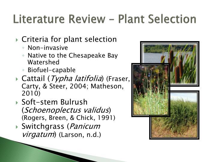 Literature Review – Plant Selection