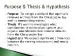 purpose thesis hypothesis