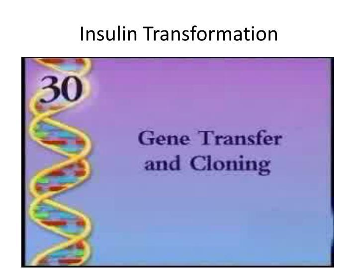 Insulin Transformation