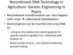 recombinant dna technology in agriculture genetic engineering in plants