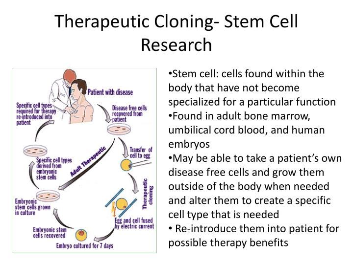 Therapeutic Cloning- Stem Cell Research