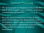upstream processing