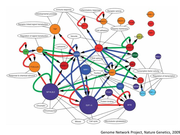 Genome Network Project, Nature Genetics, 2009