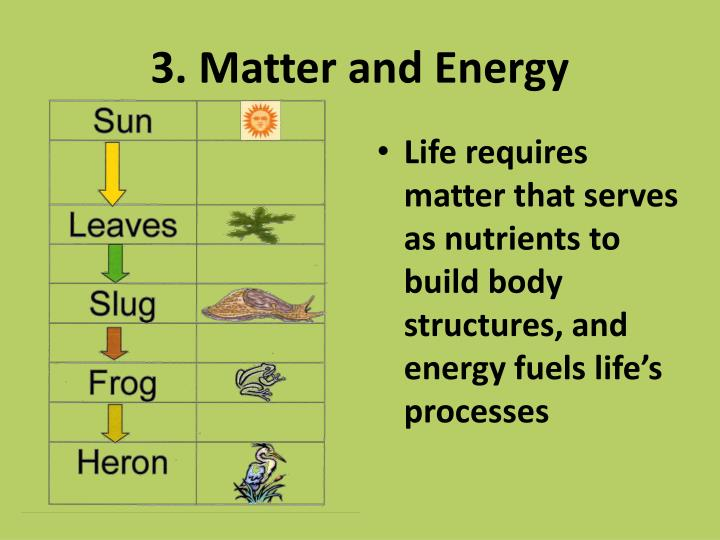 3. Matter and Energy