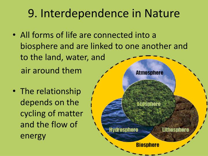 9. Interdependence in Nature
