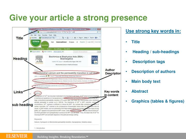 Give your article a strong presence