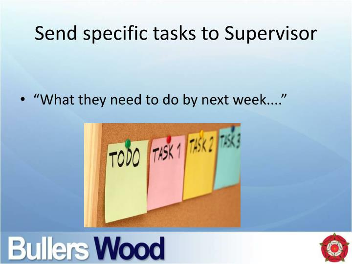 Send specific tasks to Supervisor