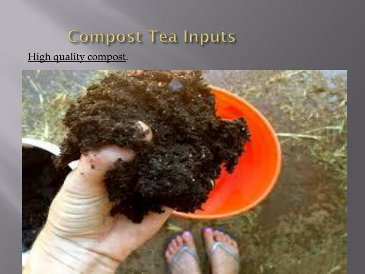 Compost Tea Inputs