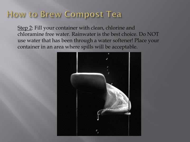 How to Brew Compost Tea