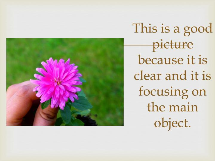 This is a good picture because it is clear and it is focusing on the main object.