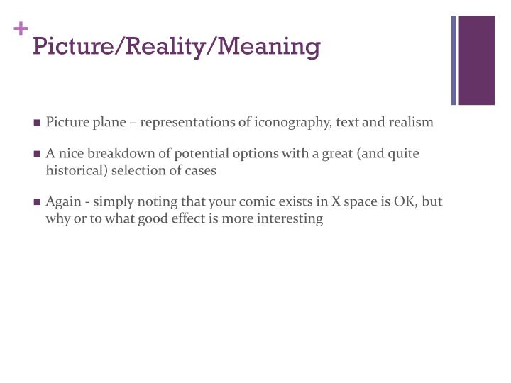 Picture/Reality/Meaning