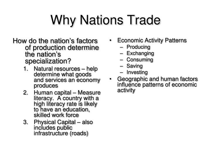 Trade Essay