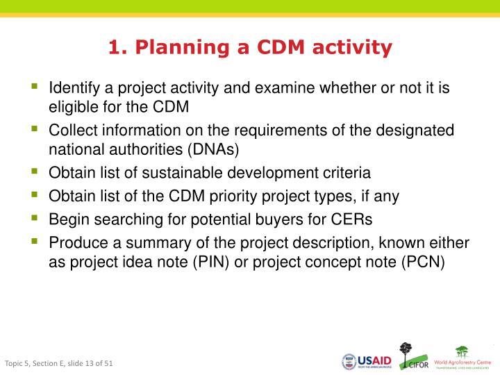 1. Planning a CDM activity