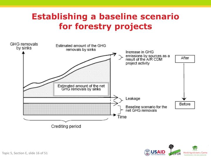 Establishing a baseline scenario