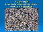 a gene pool evolution is a change in the genetic make up of a population