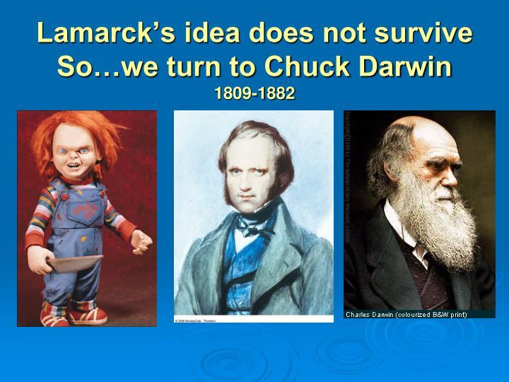 Lamarck's idea does not survive