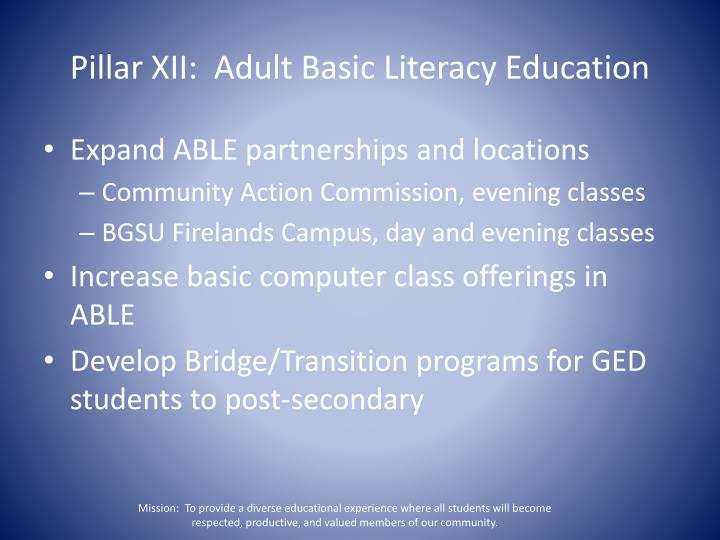Pillar XII:  Adult Basic Literacy Education