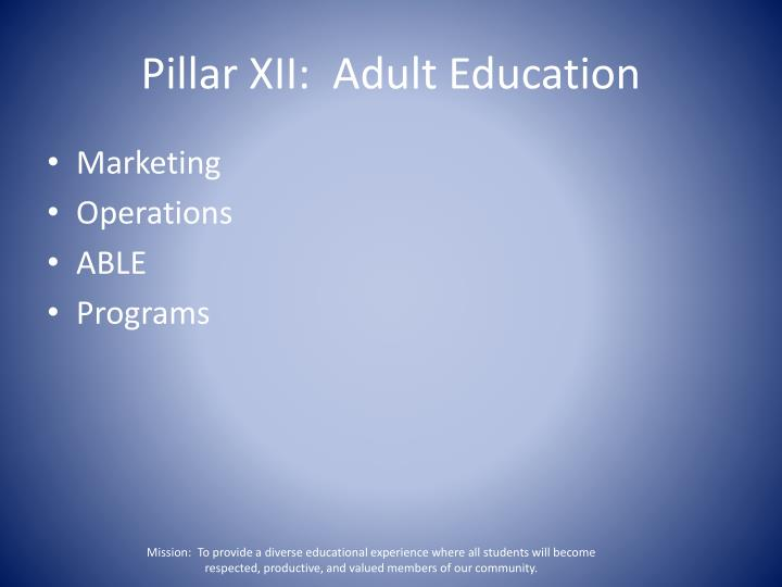 Pillar XII:  Adult Education