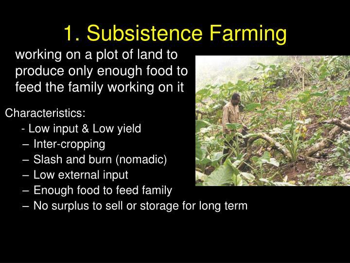 1. Subsistence Farming