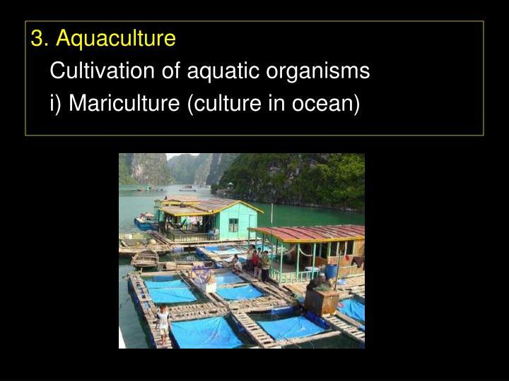 3. Aquaculture