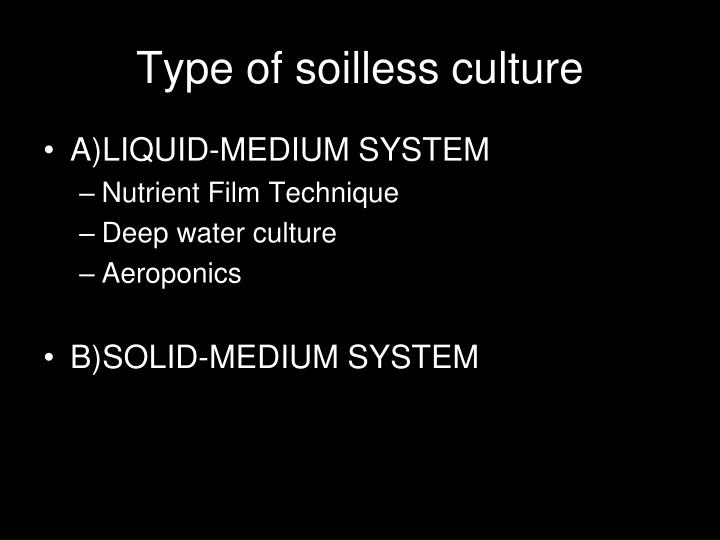 Type of soilless culture