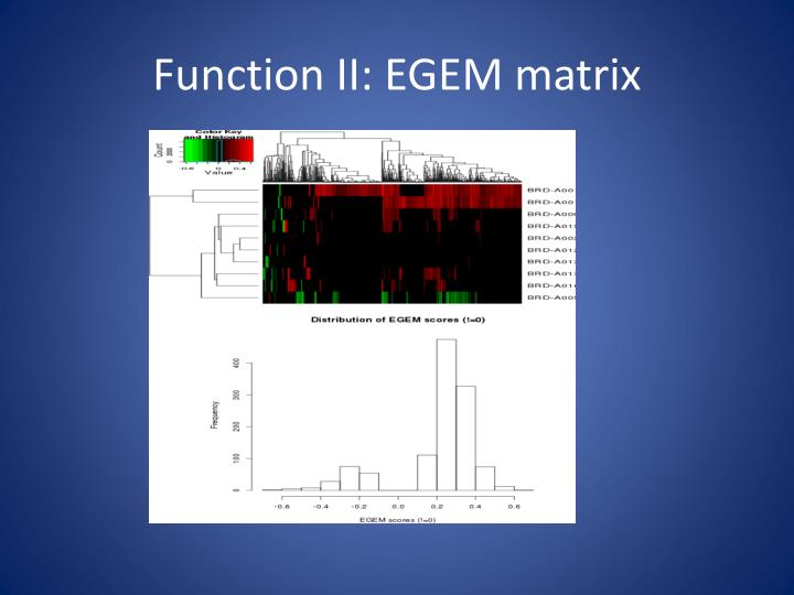 Function II: EGEM matrix
