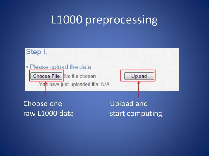 L1000 preprocessing