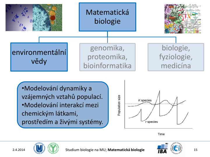 Modelování dynamiky a vzájemných vztahů populací.