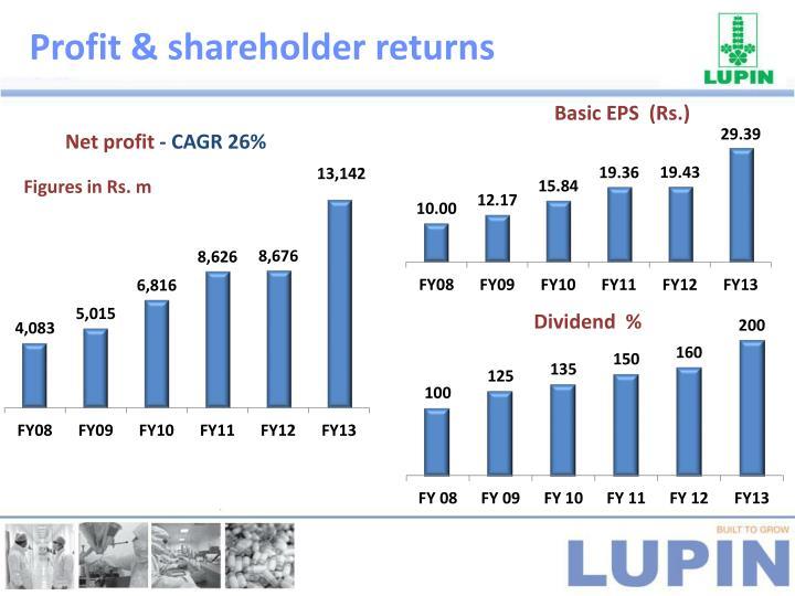 Profit & shareholder returns