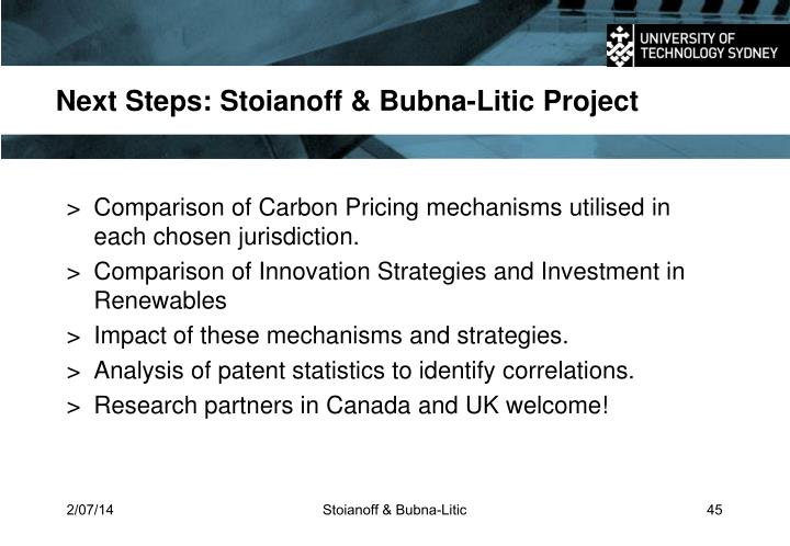 Next Steps: Stoianoff & Bubna-Litic Project