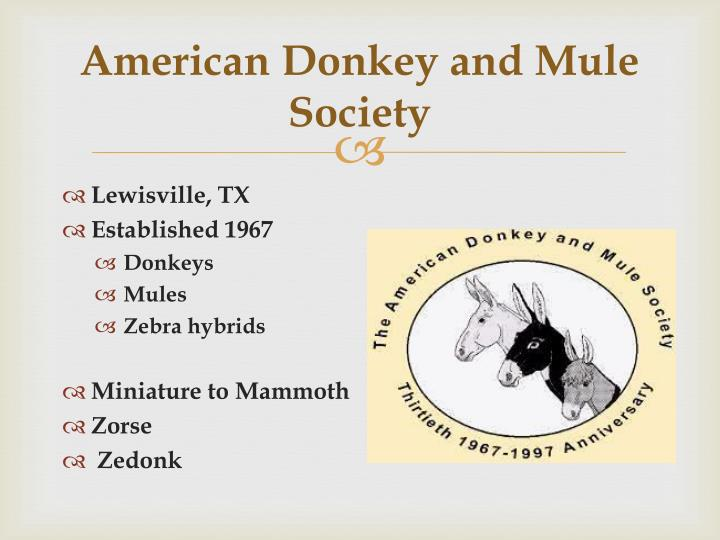 American Donkey and Mule Society